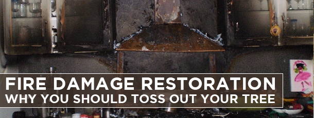 Fire Damage Restoration-Why you Should Toss out your Tree