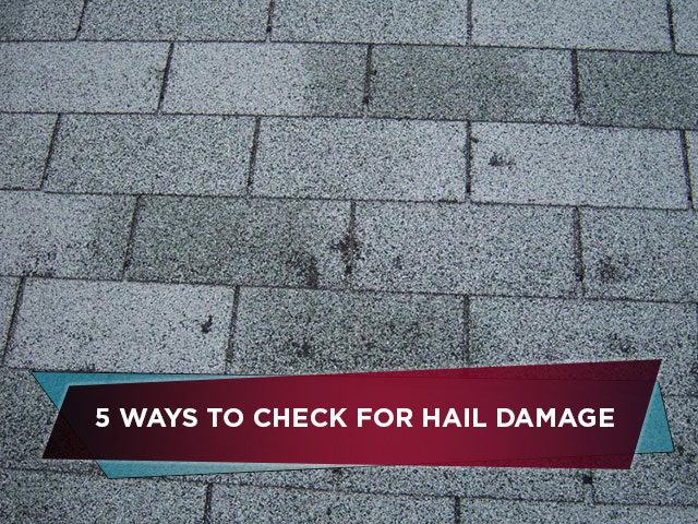5-Ways-to-Check-for-Hail-Damage