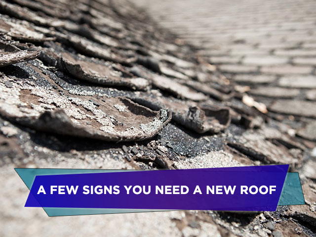 A Few Signs You Need a New Roof